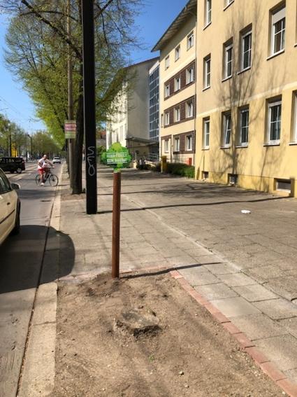 Große Diesdorfer Straße (Nordseite im Bereich Haus-Nr. 56)